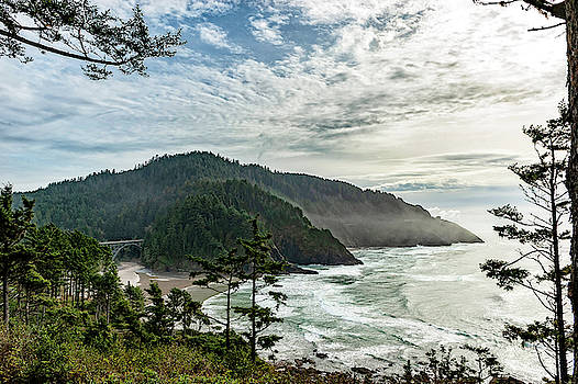 Heceta Head November 2018 by Lara Ellis