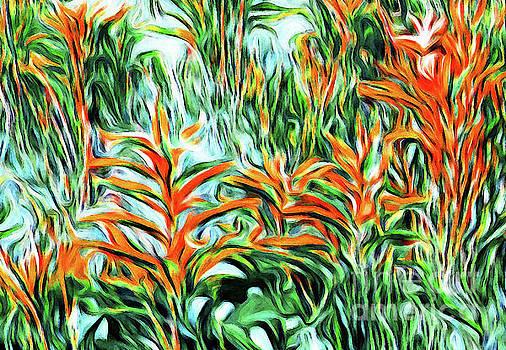 Heliconia Rainforest by Margaret Koc