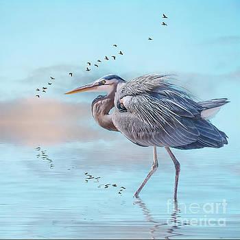 Heron at sunrise by Brian Tarr