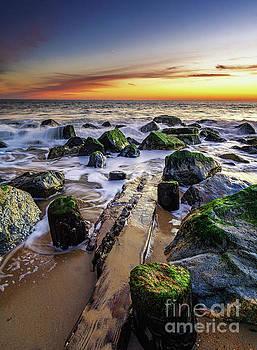 Herring Dawn by Eric J Carter