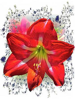 Hibiscus At Vega by Al Bourassa