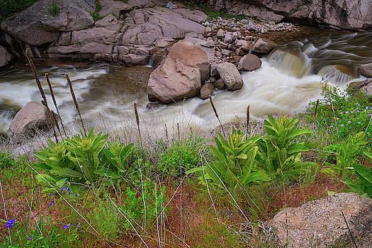Hidden Canyon Paradise by James BO Insogna