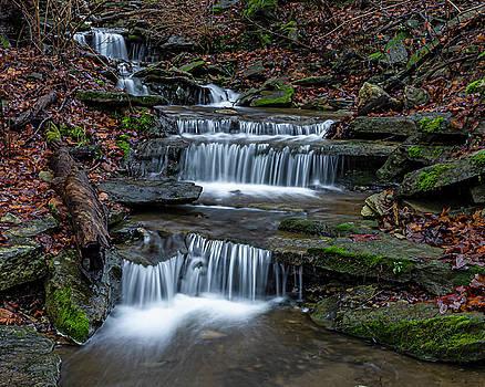 Hidden Creek by Ulrich Burkhalter