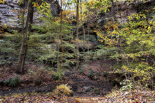 Susan Rissi Tregoning - Hidden Grotto