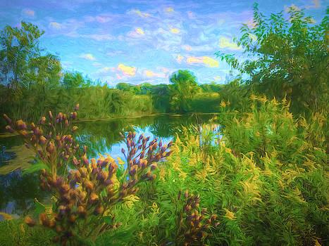 Hidden Pond by Jack Wilson