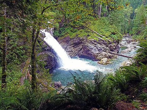 Susan Burger - Hidden Waterfall