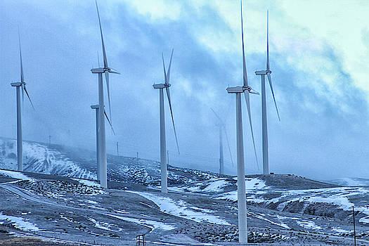 High Desert Windmills by Robert Hebert