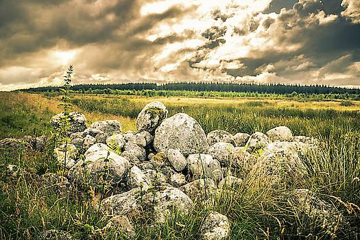 Alister Harper - Highland View