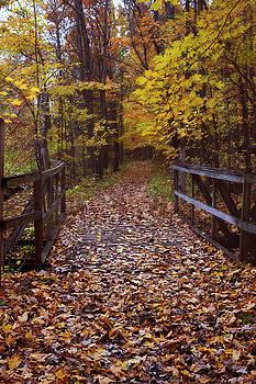 Hike for Kim by Angela King-Jones