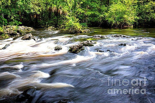 Hillsborough River Rapids, Hillsborough River State Park, Florida by Felix Lai