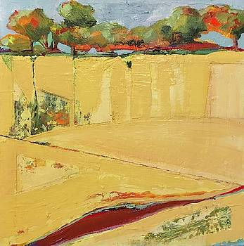 Hillside Angles by Judy Pfeifer