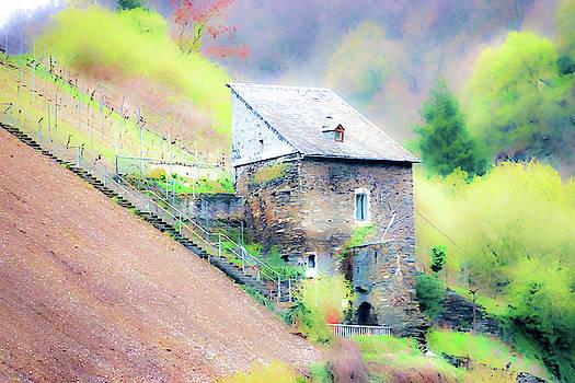 Hillside Cottage by Fran Riley
