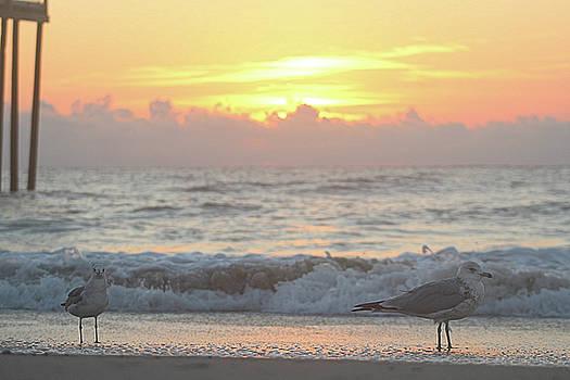 Hint Of Sunrise by Robert Banach
