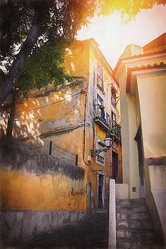 Historic Alfama District Lisbon Portugal  by Carol Japp
