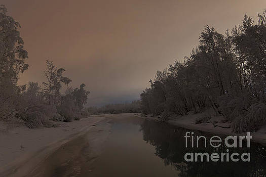 Hoar-Frosted Trees Reflect on the Knik River by Bernita Boyse