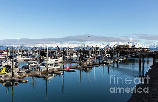 Homer Alaska fishing port by Louise Heusinkveld