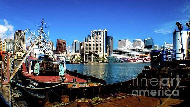 Honolulu Harbor - Skyline Oahu Hawaii by D Davila