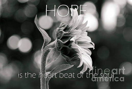 Hope is the Heartbeat by Norma Brandsberg
