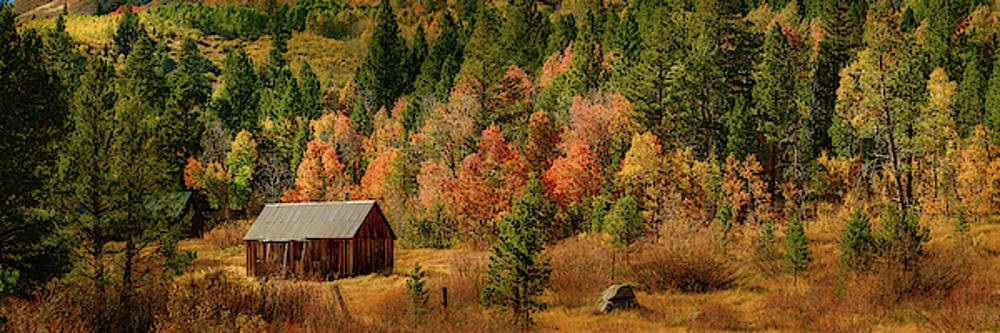 Hope Valley Cabin by John Hight