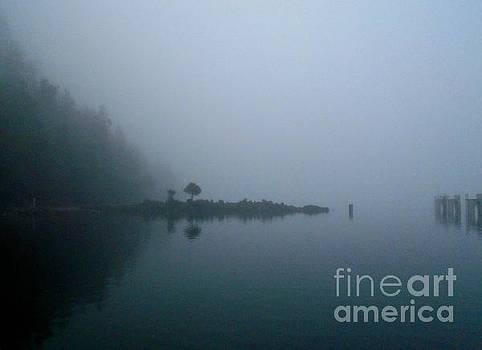 Hornby Island Fog by John Lyes