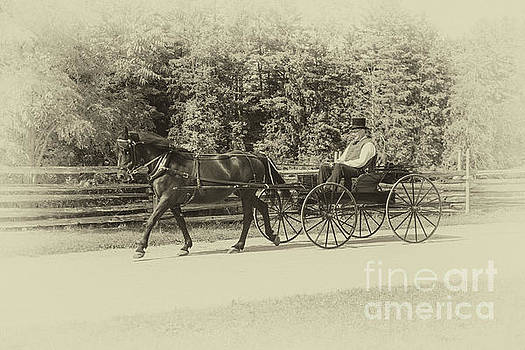 Horse And Buggy - 1860s Style - 2 by Robert McAlpine