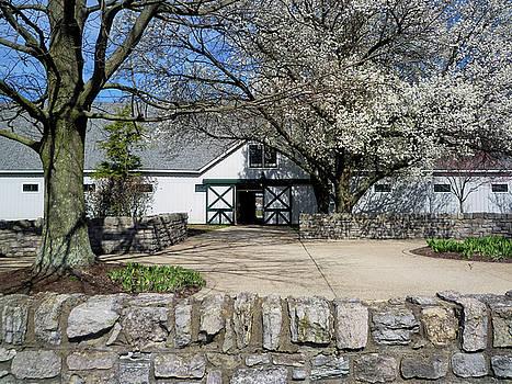 Tony Crehan - Horse Barn - Lexington - Kentucky - USA