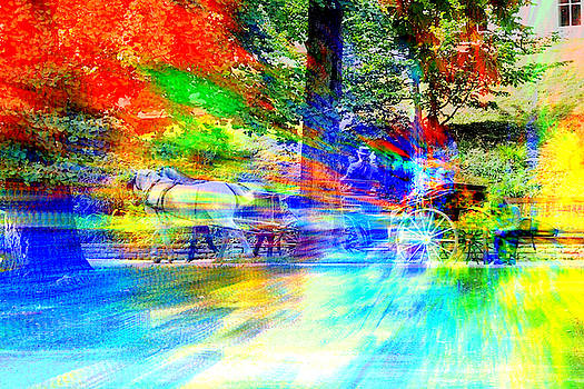 Horse-drawn carriage in the park by Lee Eggstein
