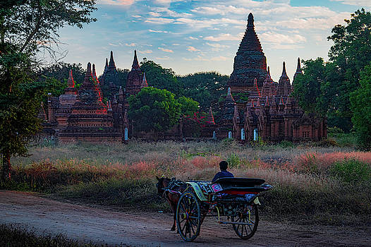 Horse Drawn Cart In Myanmar at Sunrise by Chris Lord