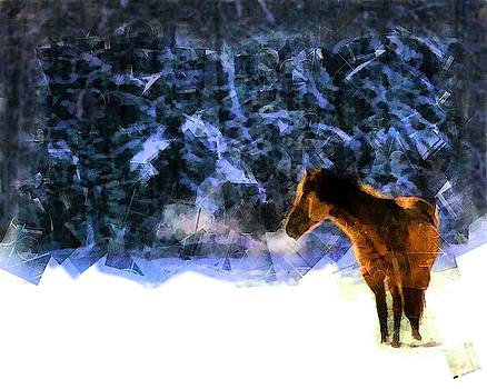 Horse in the Snow by Mario Carini