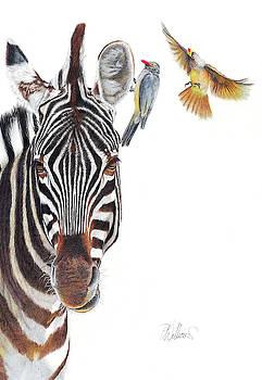 Horse Whisperer by Peter Williams