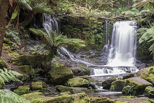 Horseshoe Falls. Tasmania by Sergey Simanovsky