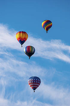 Hot Air Balloons in Flight by Robert VanDerWal
