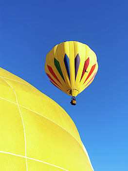 Hot Air Yellow Balloons by Robert VanDerWal