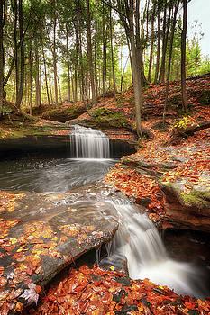 Susan Rissi Tregoning - Houghton Falls Nature Preserve