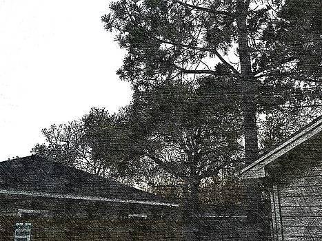 House 18 by Lan Kwon