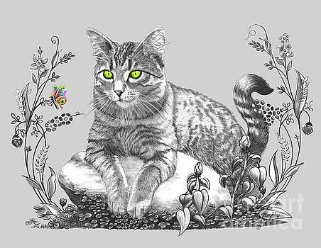 House Cat by Murphy Elliott