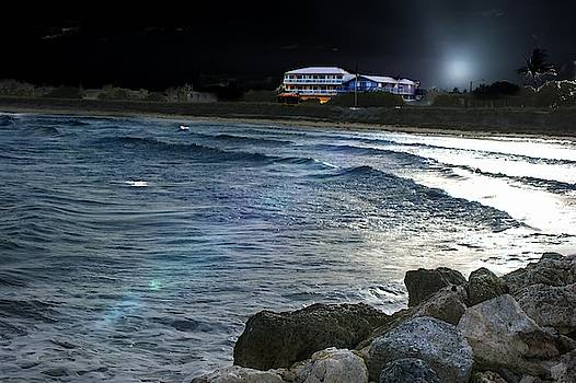 House on the Night Beach by Yvonne Sewell