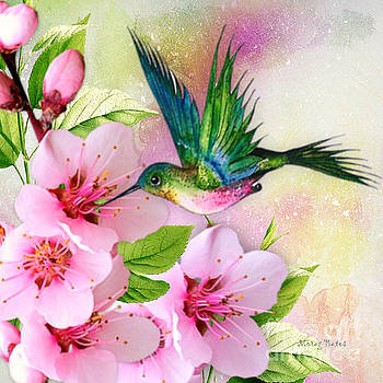 Hummingbird on Pink Blossom by Morag Bates