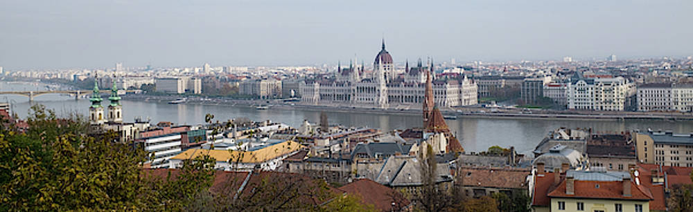 Hungarian Parliament Across the Danube by Mark Duehmig