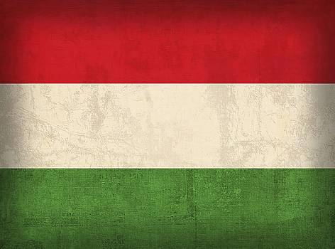 Hungary Wall Art by David Bowman