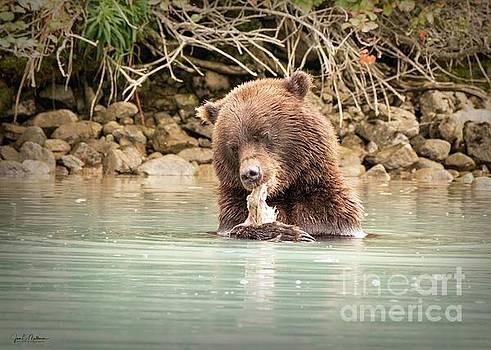 Hungry Bear by Jan Mulherin