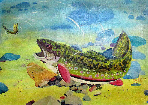 Hungry Trout by Clyde J Kell