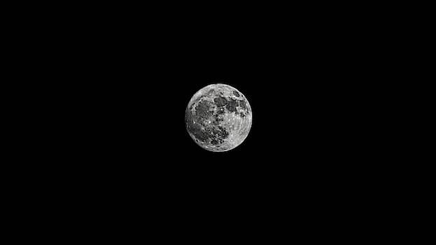 Hunters Moon 2018 by Philip A Swiderski Jr