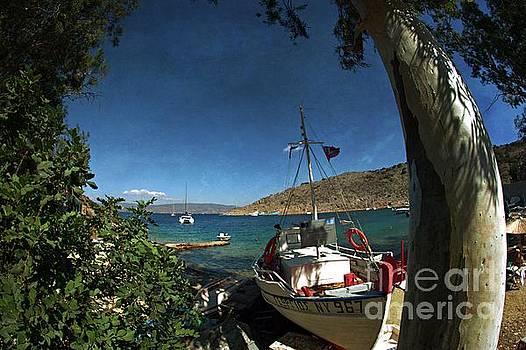 Hydra island Greece_1  by Amalia Suruceanu