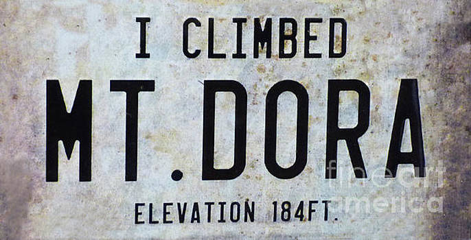 Sharon Williams Eng - I Climbed Mt Dora 300