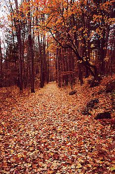 I love Autumn best by Angela King-Jones