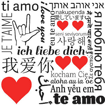 I Love You in 20 Languages by Christine Buckley