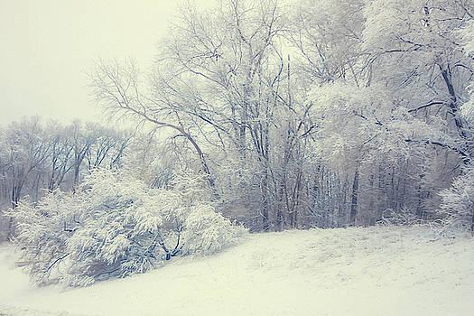 Ice castles by Angela King-Jones