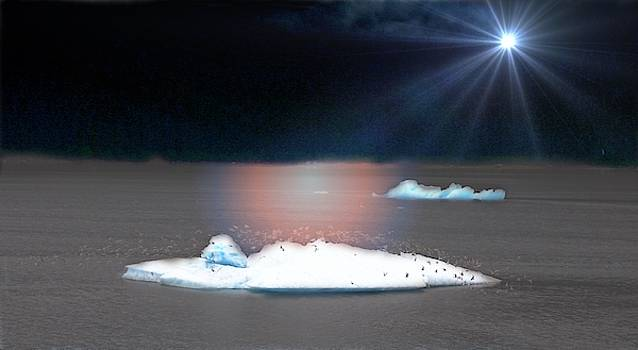 Iceberg in Alaska by Yvonne Sewell