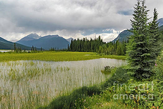 Icefield Mountain View by Norma Brandsberg